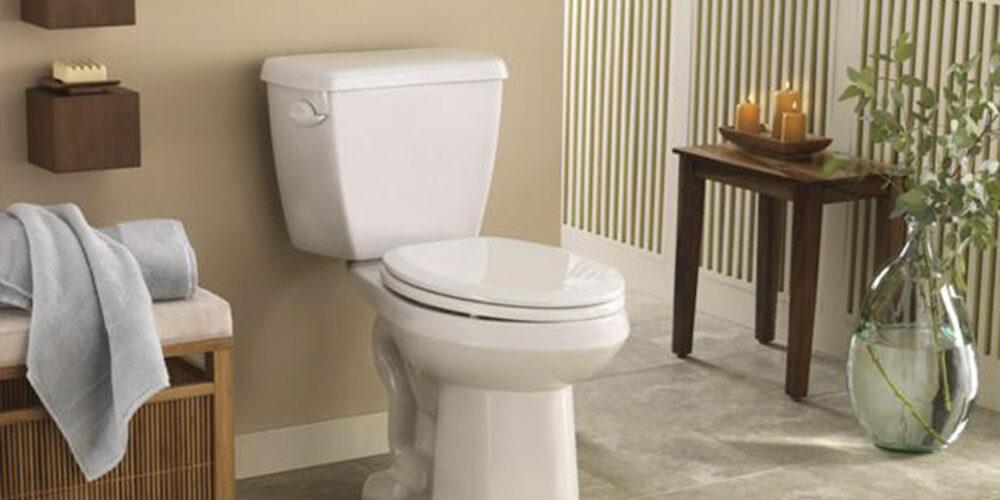 Need to Unblock your Toilet FAST? - Mink Plumbing in Tyler TX
